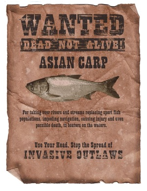 Wanted Poster-Asian Carp